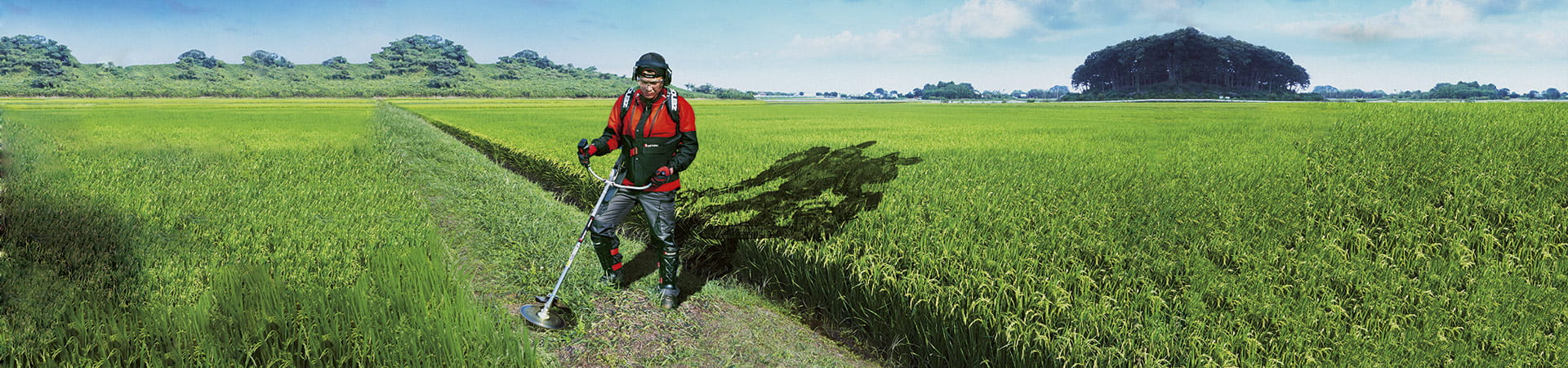 Man cutting grass with Zenoah brushcutter